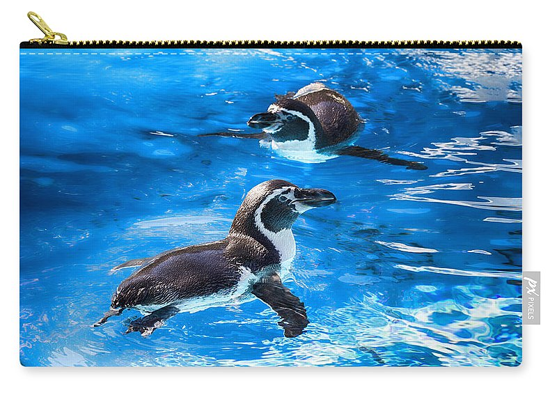 Maui Penguins Carry-all Pouch featuring the photograph Bobbing Time by Douglas Barnard