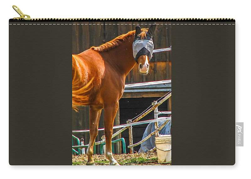 Barn Carry-all Pouch featuring the photograph Bode In Disguise by Guy Whiteley