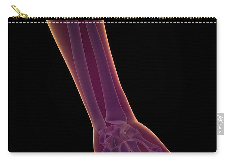 Transparency Carry-all Pouch featuring the photograph Bones Of The Lower Arm by Science Picture Co