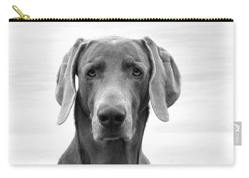 Weimaraner Carry-all Pouch featuring the photograph Published Book Cover Of Quotable Dogs by Art Dingo