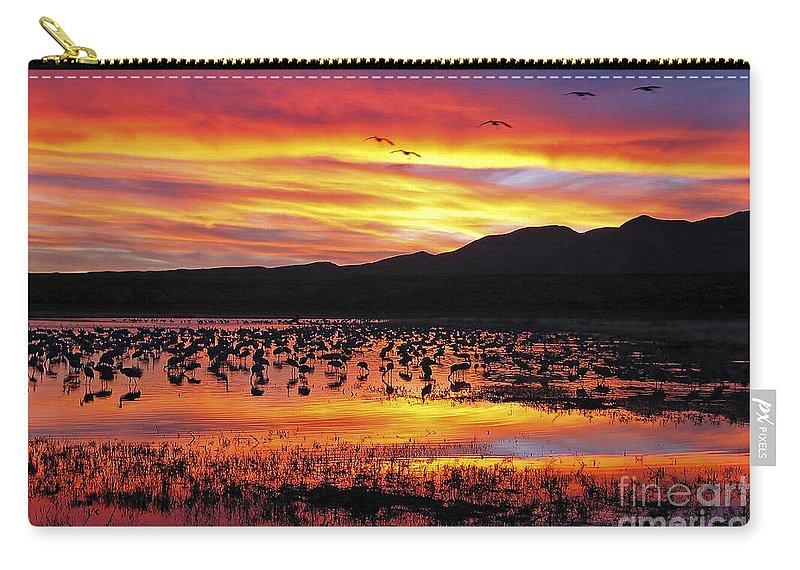 Ralser Carry-all Pouch featuring the photograph Bosque Sunset II by Steven Ralser