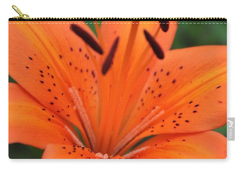Carry-all Pouch featuring the photograph Botanical Beauty 1 by Jennifer E Doll