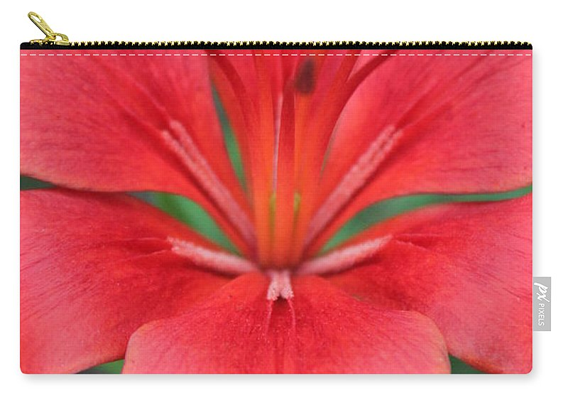 Carry-all Pouch featuring the photograph Botanical Beauty 2 by Jennifer E Doll