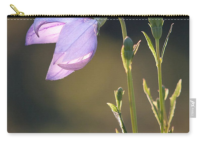 Andrew Slater Photography Carry-all Pouch featuring the photograph Botanical Purple Iris by Andrew Slater