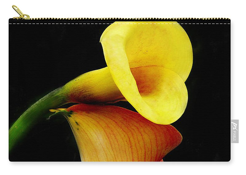 Flower Carry-all Pouch featuring the digital art Both Of Us by Ana Cedillo
