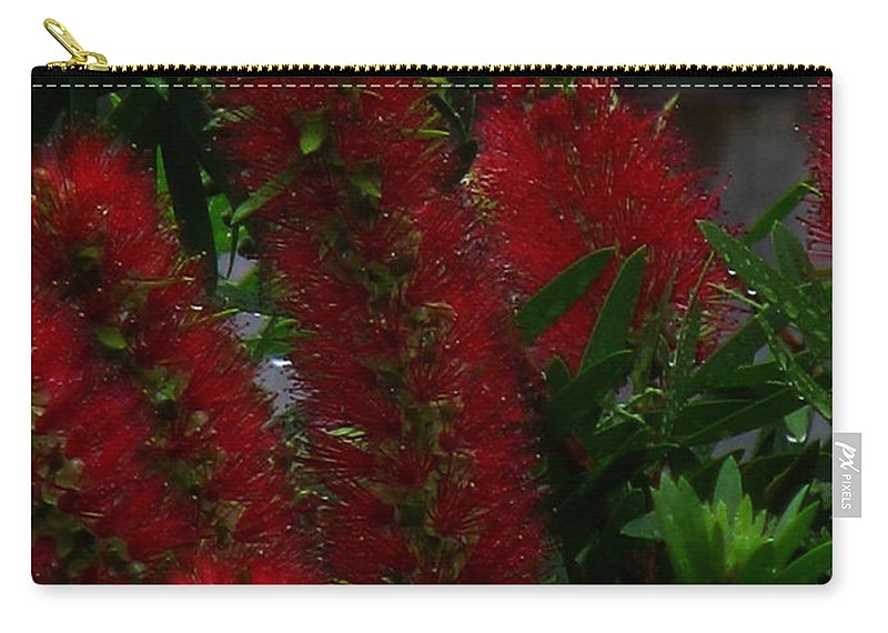 Patzer Carry-all Pouch featuring the photograph Bottle Brush by Greg Patzer