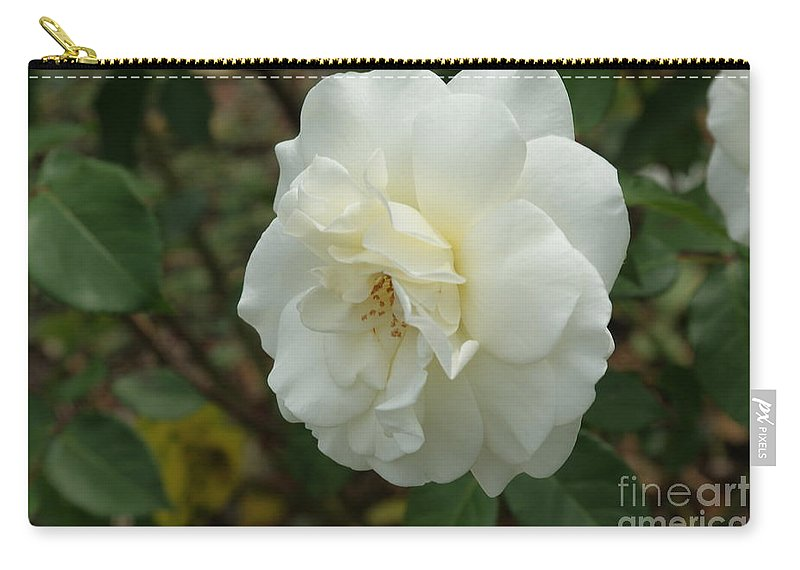 Big Carry-all Pouch featuring the photograph Bountiful White Rose... by Rob Luzier