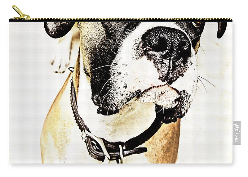 Animal Carry-all Pouch featuring the photograph Boxer Dog Poster by Peter v Quenter