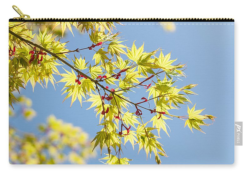 Closeup Carry-all Pouch featuring the photograph Branche In Springtime by TouTouke A Y