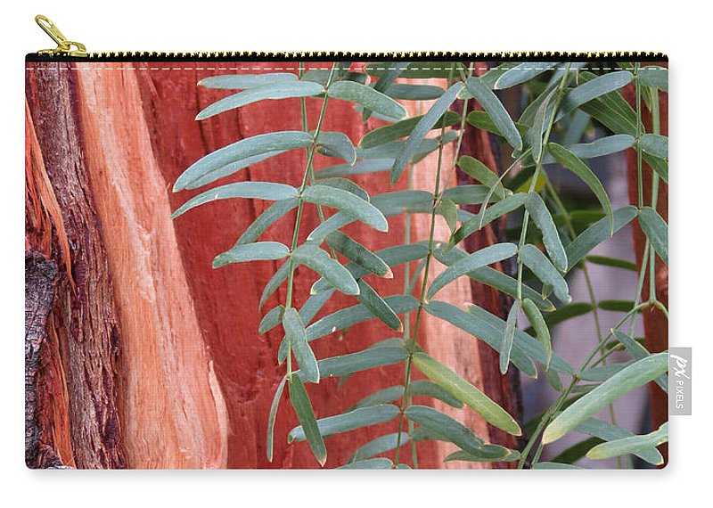 Tree Carry-all Pouch featuring the photograph Branches And Bark by Laurel Powell
