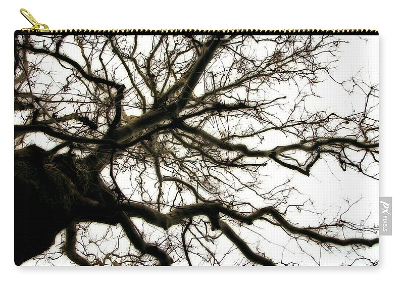 Branches Carry-all Pouch featuring the photograph Branches by Michelle Calkins
