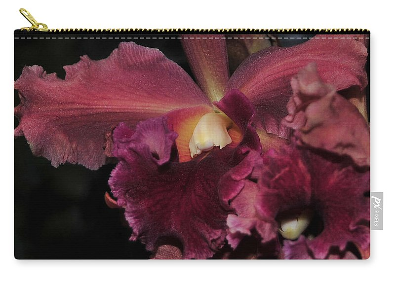 Orchid Carry-all Pouch featuring the photograph Brassolaeliocattleya Helen Huntington Chevy Chase by Terri Winkler
