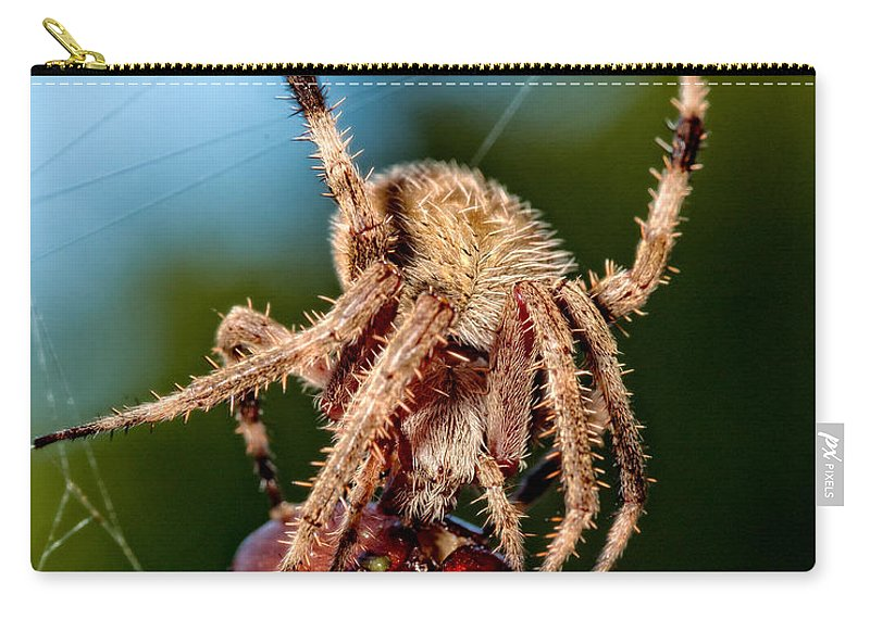Christopher Holmes Photography Carry-all Pouch featuring the photograph Breakfast by Christopher Holmes
