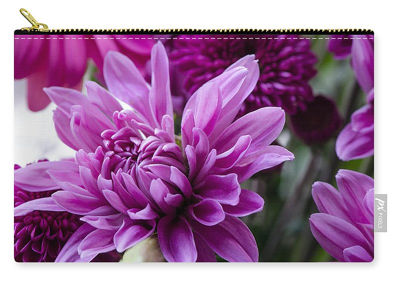 Aaster Carry-all Pouch featuring the photograph Bright And Beautiful Easter Mums by Michael Moriarty