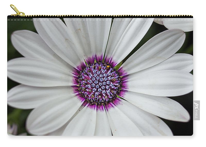Flowers Carry-all Pouch featuring the photograph Bright Eye by Ken Kobe