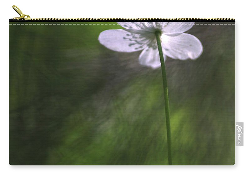 Photo Carry-all Pouch featuring the photograph Bright Light Flower by Dreamland Media