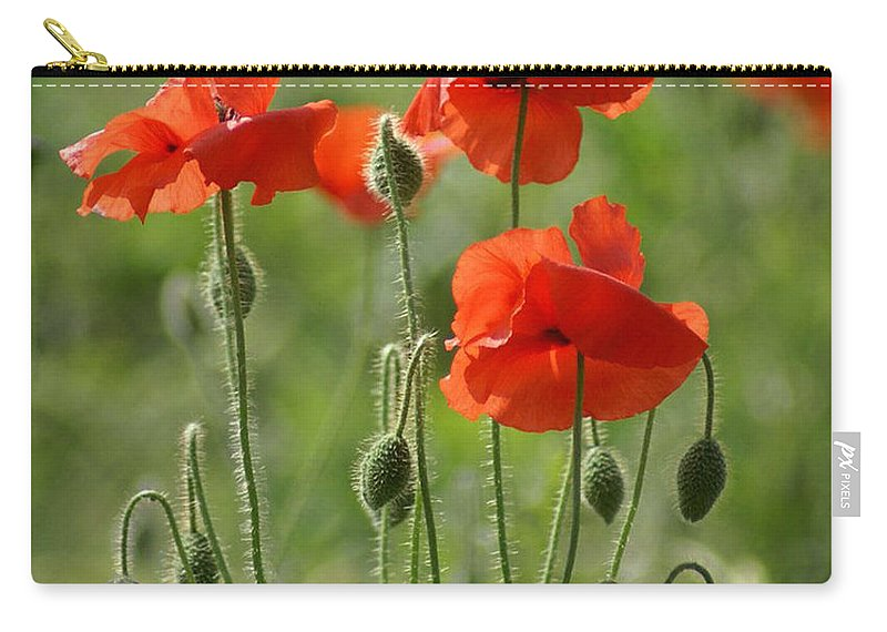 Poppies Carry-all Pouch featuring the photograph Bright Poppies 2 by Carol Lynch