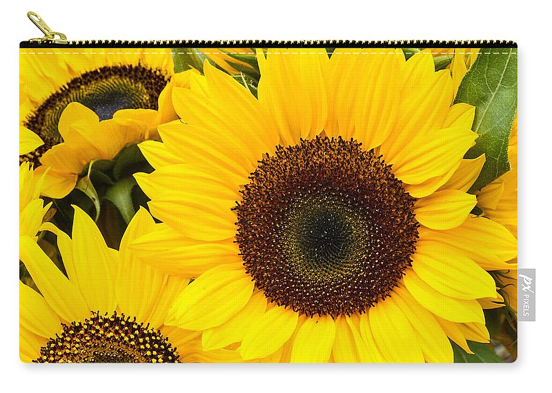 Agriculture Carry-all Pouch featuring the photograph Bright Sunflower Blossoms by John Trax