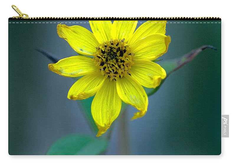 Bright Yellow Wildflower Carry-all Pouch featuring the photograph Bright Yellow Wildflower by Optical Playground By MP Ray