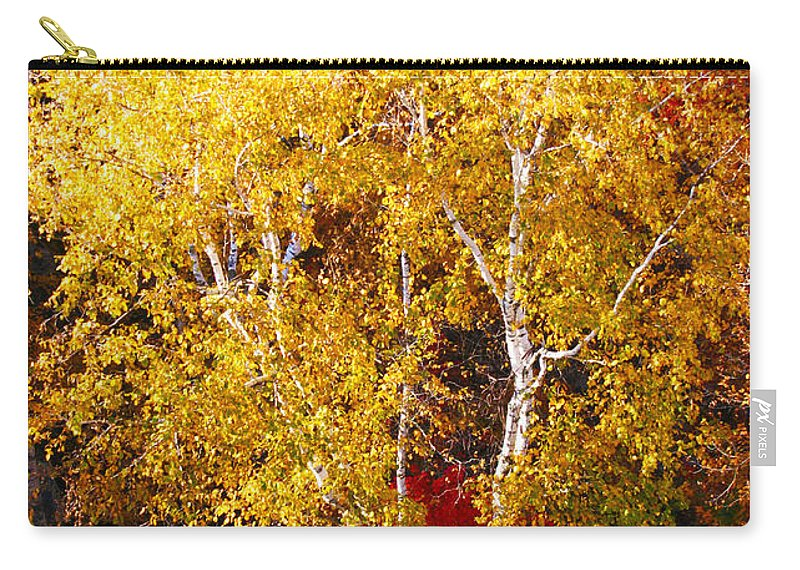Landscape Carry-all Pouch featuring the photograph Brilliance Of Autumn On Rib Mountain by Tiffany Erdman