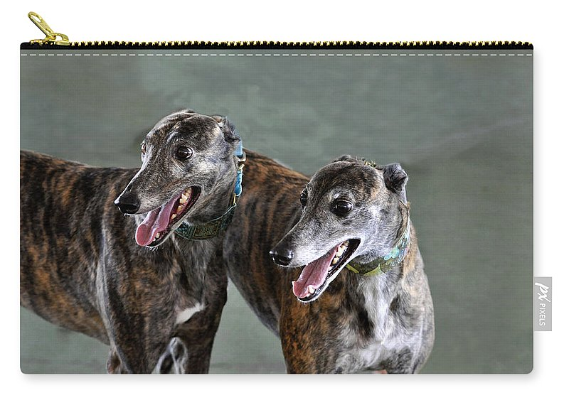 Horizontal Carry-all Pouch featuring the photograph Brindle Greyhound Dogs Usa by Sally Rockefeller