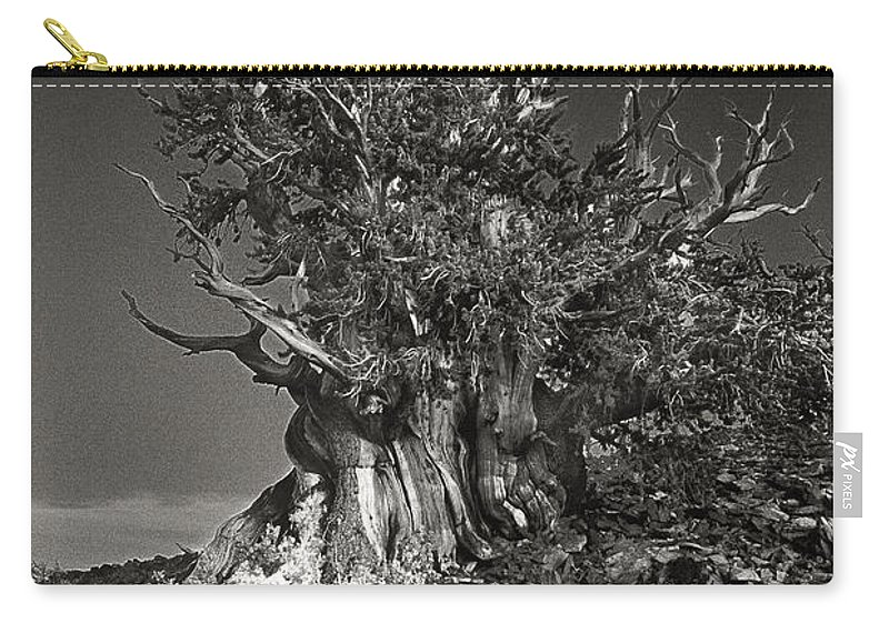 North America Carry-all Pouch featuring the photograph Bristlecone And Wildflowers In Black And White by Dave Welling