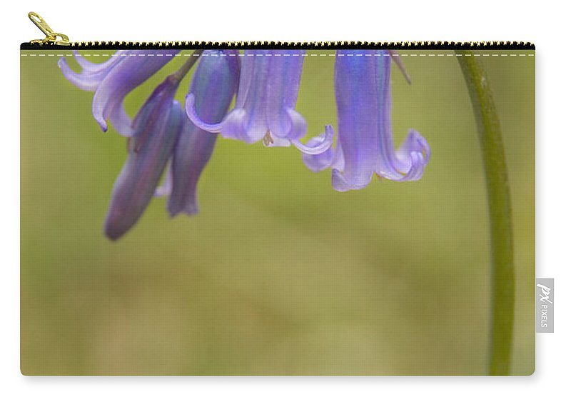 Bluebell Carry-all Pouch featuring the photograph British Bluebell Hyacinthoides Non Scripta. by Liz Leyden