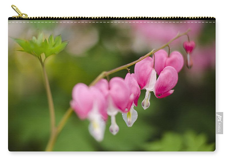 Old Fashioned Carry-all Pouch featuring the photograph Broken Heart by Heather Applegate