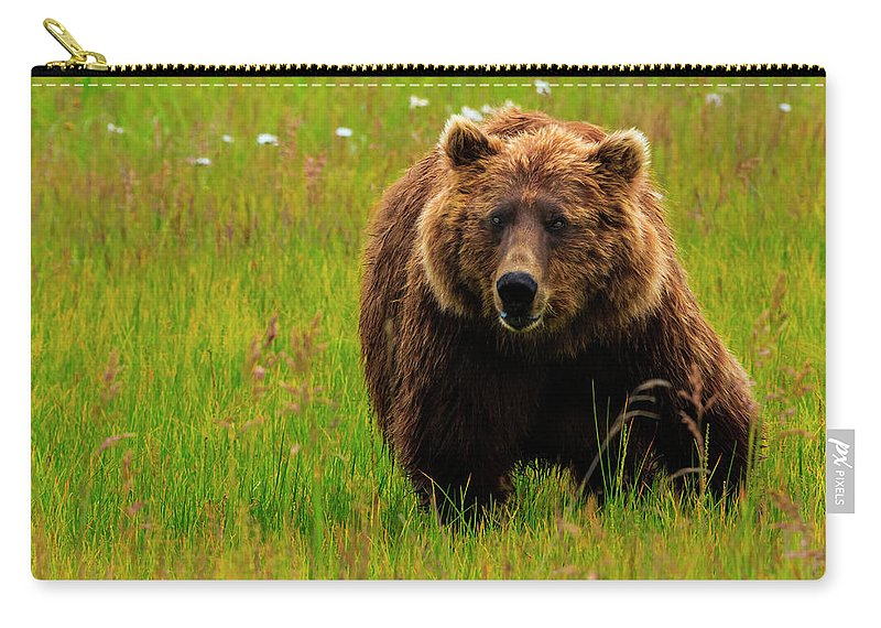 Brown Bear Carry-all Pouch featuring the photograph Brown Bear, Lake Clark National Park by Mint Images/ Art Wolfe