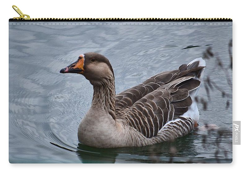 Brown Feathered Goose Carry-all Pouch featuring the photograph Brown Feathered Goose by Maria Urso