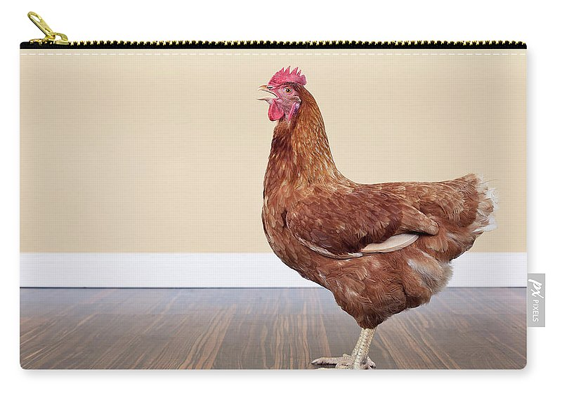 Hen Carry-all Pouch featuring the photograph Brown Hen by Little Brown Rabbit Photography