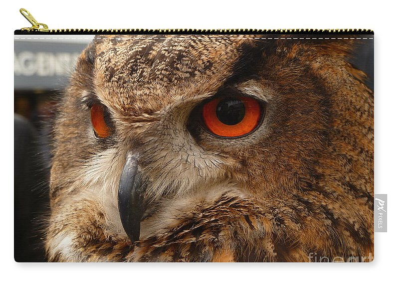 Brown Carry-all Pouch featuring the photograph Brown Owl by Vicki Spindler