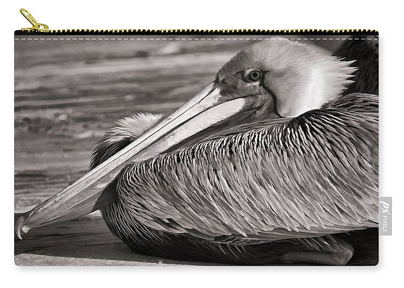 Black And White Pelican Carry-all Pouch featuring the photograph Brown Pelican by HH Photography of Florida