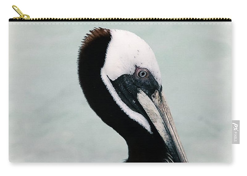 Bird Carry-all Pouch featuring the photograph Brown Pelican by Teresa Zieba