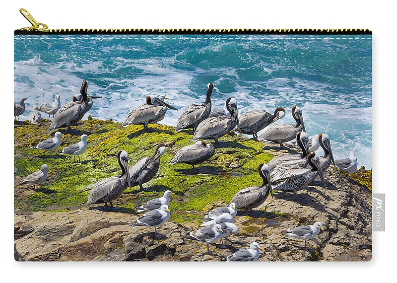 Brown Pelican Carry-all Pouch featuring the photograph Brown Pelicans by Kathleen Bishop