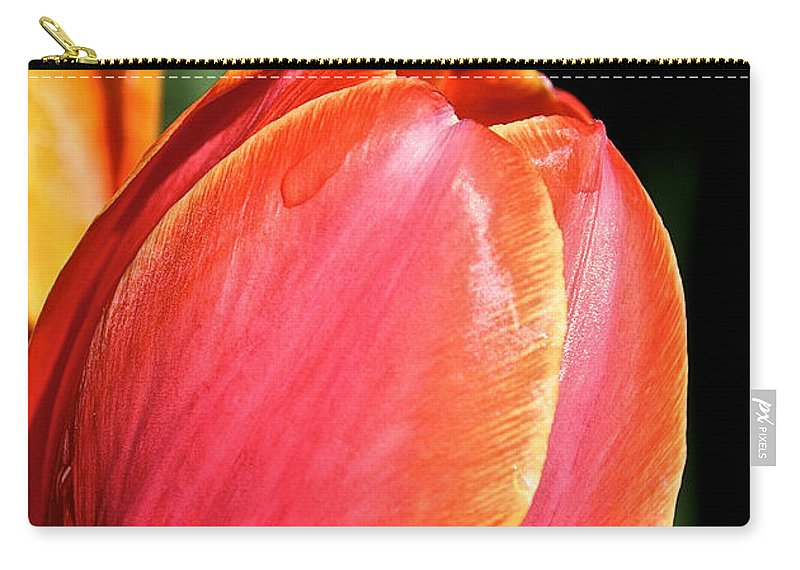 Flower Carry-all Pouch featuring the photograph Brushstrokes By Tulip by Susan Herber