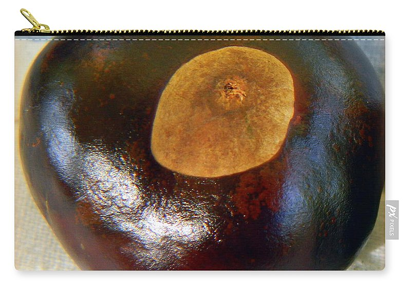 Buckeye Carry-all Pouch featuring the photograph Buckeye by Kathy Barney