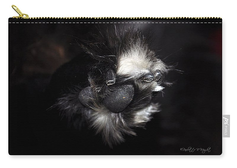 Art Carry-all Pouch featuring the photograph Buddys Fluffy Paw by Paulette B Wright
