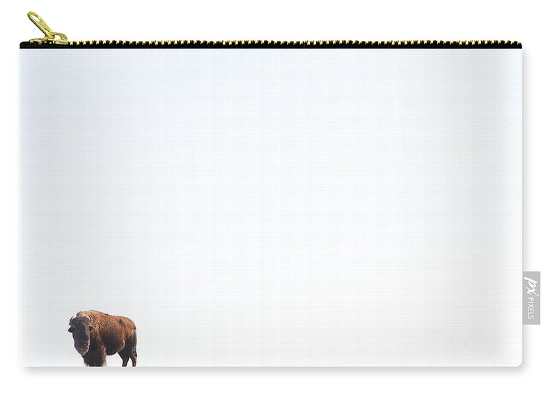 Buffalo Carry-all Pouch featuring the photograph Buffalo Country by James BO Insogna