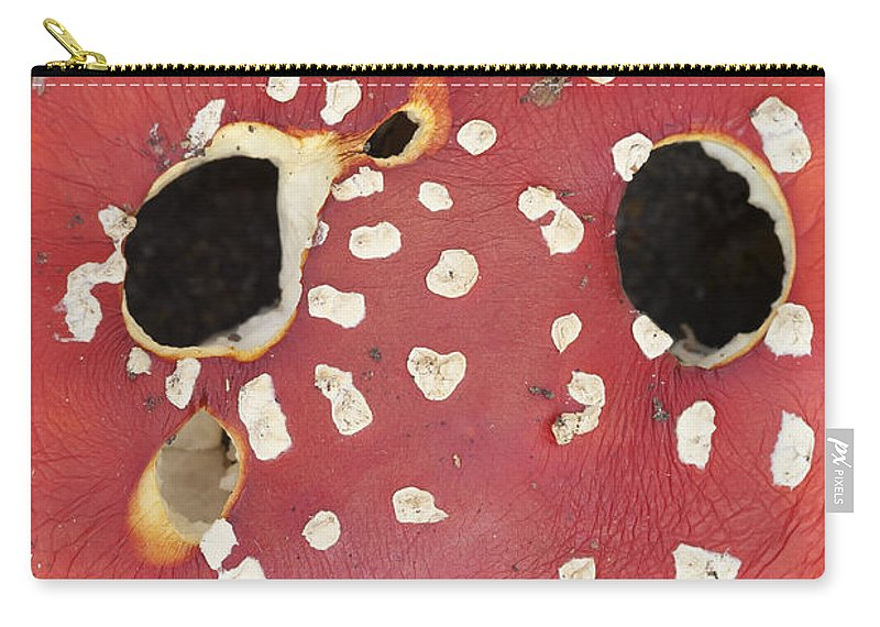 Amanita Muscaria Carry-all Pouch featuring the photograph Bugaboo - Amanita Muscaria by Michal Boubin