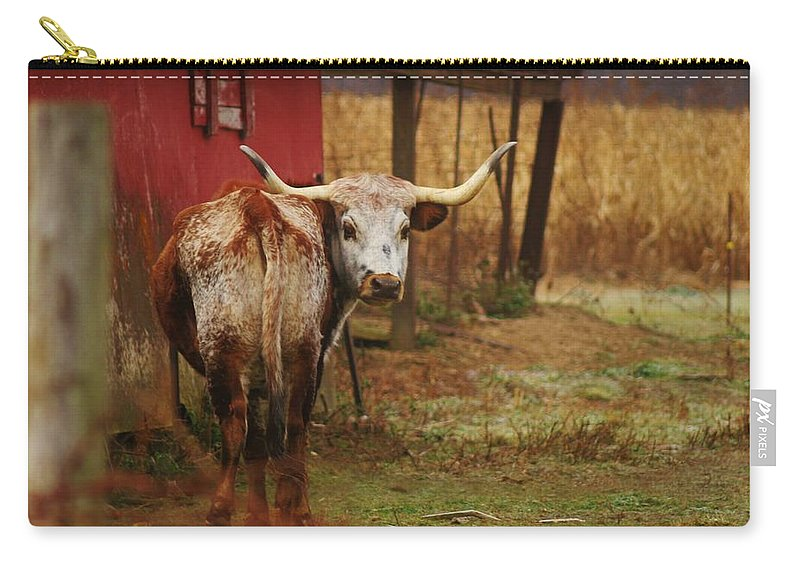 Bull Carry-all Pouch featuring the photograph Bull by Dan Young