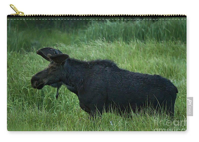 Moose Carry-all Pouch featuring the photograph Bull Moose  #5658 by J L Woody Wooden