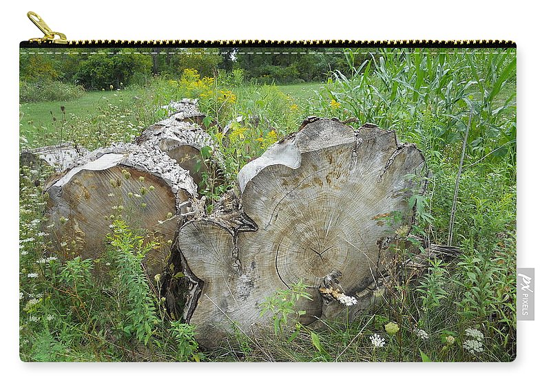 Nature Carry-all Pouch featuring the photograph Bump On A Log by Coleen Harty
