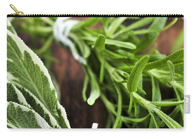 Herb Carry-all Pouch featuring the photograph Bunches Of Fresh Herbs by Elena Elisseeva