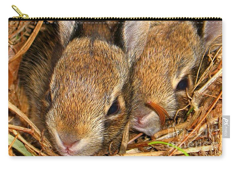 Bunny Babies Carry-all Pouch featuring the photograph Bunny Babies by Patti Whitten