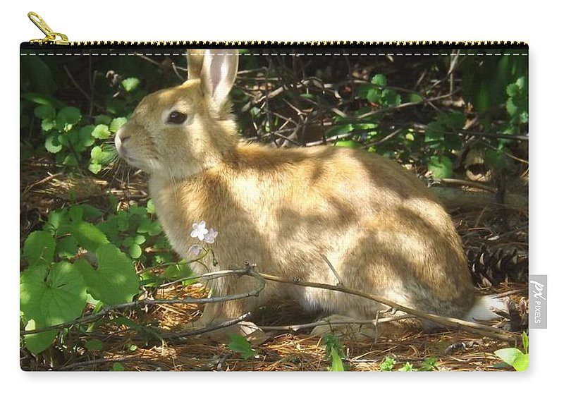 Rabbit Carry-all Pouch featuring the photograph Bunny In The Wild 2 by Sara Raber