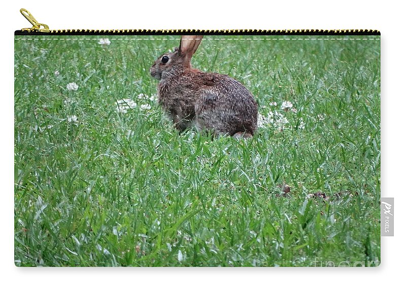 Rabitt Carry-all Pouch featuring the photograph Bunny by Joseph Baril