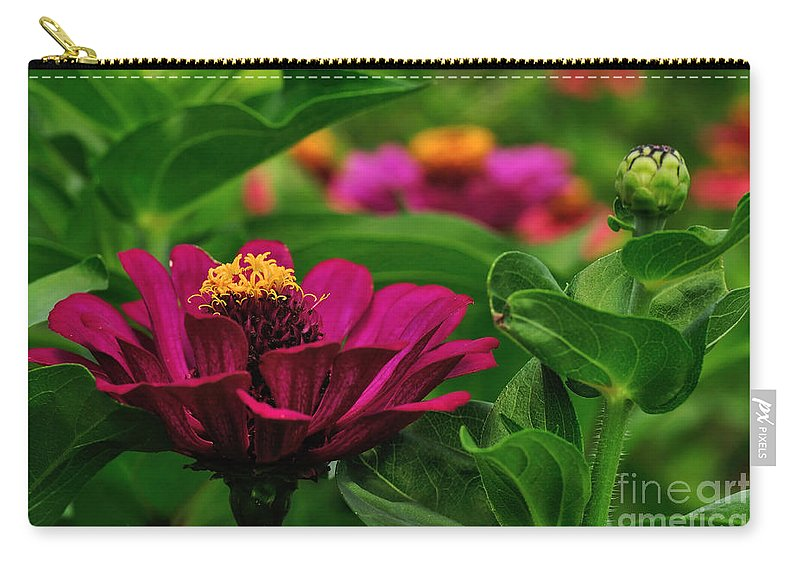 Photography Carry-all Pouch featuring the photograph Burgundy Zinnia by Kaye Menner