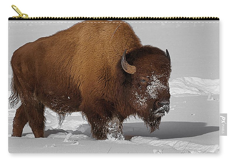 Bison Carry-all Pouch featuring the photograph Burly Bison by Priscilla Burgers