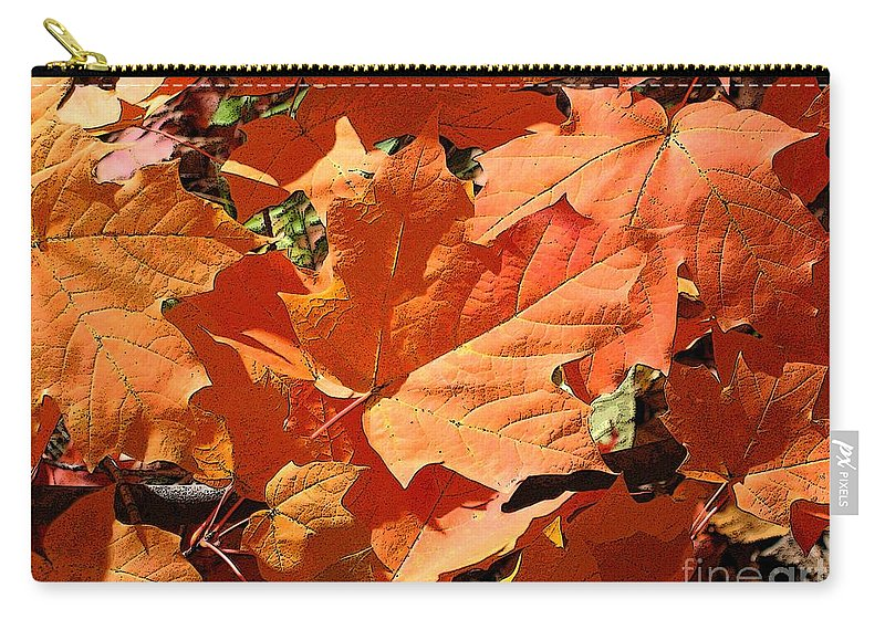 Autumn Carry-all Pouch featuring the photograph Burnt Orange by Ann Horn